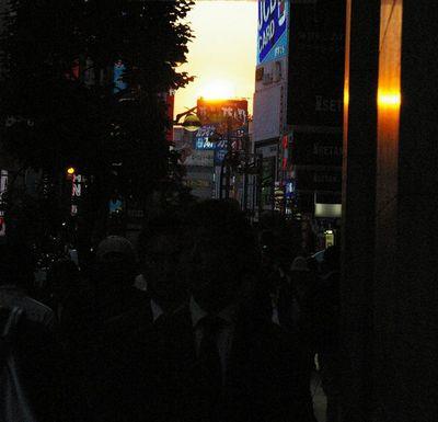 夕日3.jpg